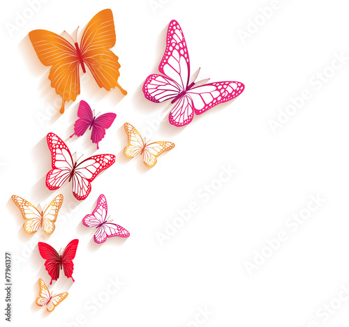 Realistic Colorful Butterflies Isolated for Spring poster