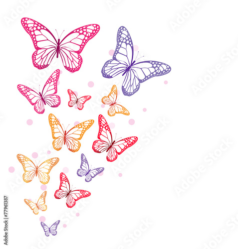 Realistic Colorful Butterflies Isolated for Spring - 77961387