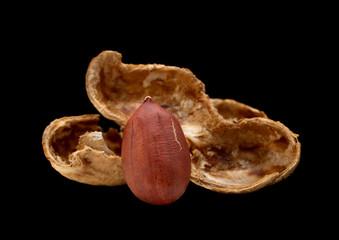 Peanut on black