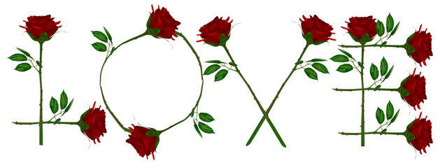 Love write Red rose.