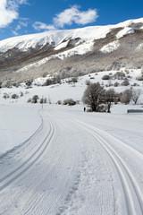 Cross-Country Ski Slope