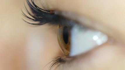 Macro Close-up of eye blinking