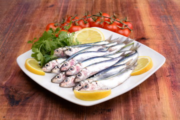 sarde - sardines - сардины - sardinas -