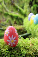 Easter eggs in the forest