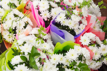 many  bouquets of chrysanthemums in bright packages