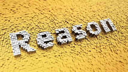 Pixelated Reason