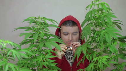 Young man in hoodie lighting up and smoking Marijuana joint.