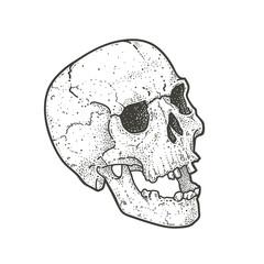 Dot Work Skull