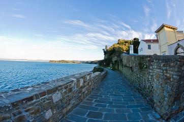 Promenade by the sea near city of Piran in Istria