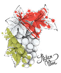 Abstract illustration -- wine from Italy