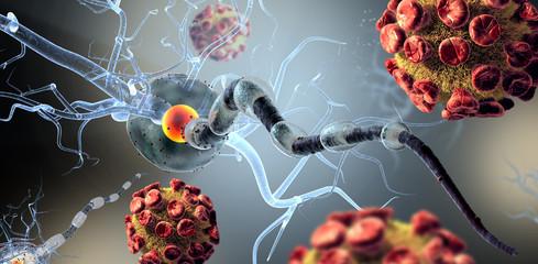 nerve cells, concept for tumors,brain surgery