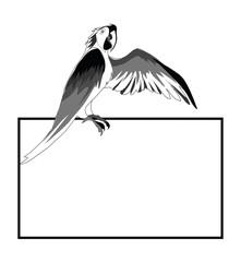Parrot message