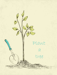 tree planting.