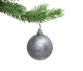 silvery sphere on a fir-tree the isolated