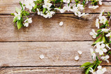 flowers on wooden background - 77981577