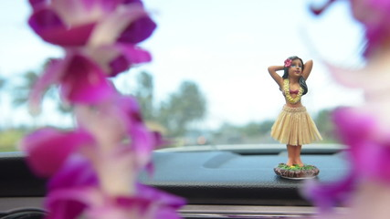 Hawaii travel car - Hula doll dancing and lei