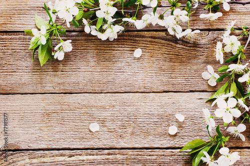 obraz PCV kwiaty na drewnianym tle