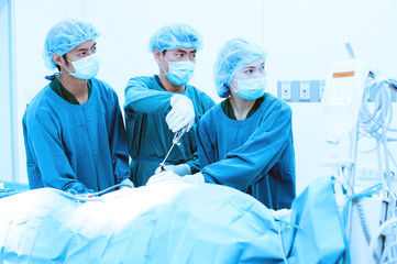 veterinarian doctor for laparoscopic surgical with blue filter