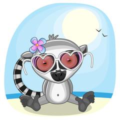 Lemur on the beach