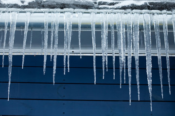 Icicles on the roof. Winter. Blue wooden background.