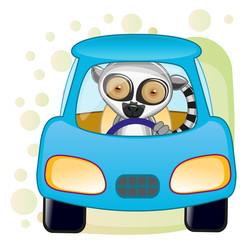 Lemur in a car