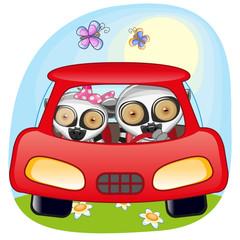 Two Lemurs in a car