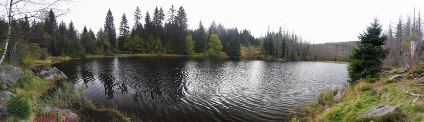 lake Laka  in Sumava national park