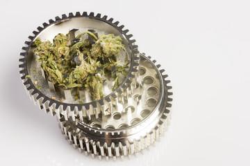 Marijuana in grinder