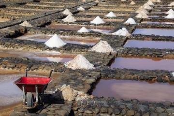 Evaporation ponds for sea salt production