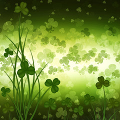 St. Patrick's Day greeting card  on the green background