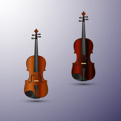Violin vector conception