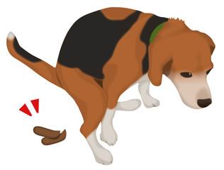 ウンチをしている犬