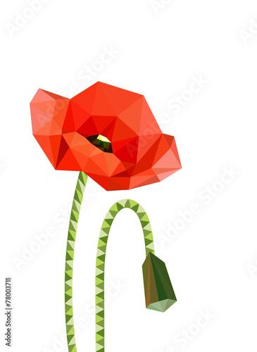 Naklejka Illustration of origami poppies
