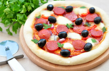Pizza handmade with Salami, Mozzarella, Olives, Tomato Sauce