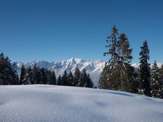 Bergpanorama mit Karwendel