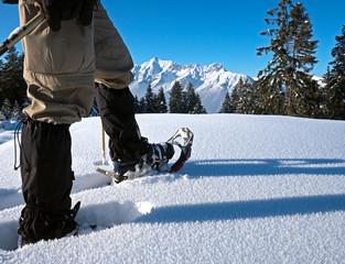 Schneeschuhe mit Alpenpanorama
