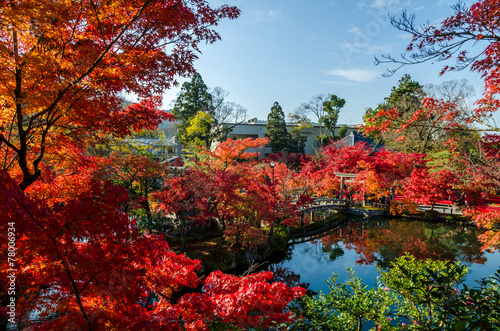 Foto op Plexiglas Japan Autumn foliage at the stone bridge in Kyoto, Japan