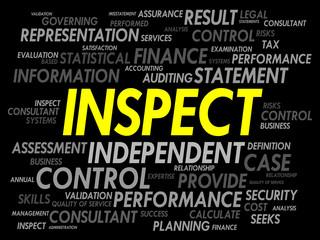 INSPECT word cloud, business concept
