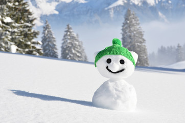 Snowman in the knitted cap