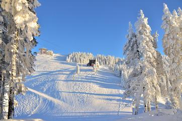 Ski slope in Poiana Brasov Romania in winter