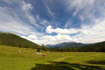 Wandern in den Bergen ©yvonneweis