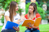 Girls studying at the park