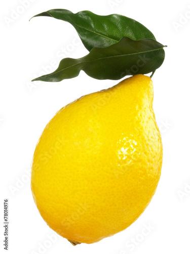 canvas print picture Zitrone mit Blätter