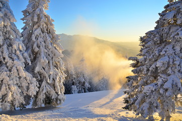 Snowstorm over the ski slope at sunset into the forest