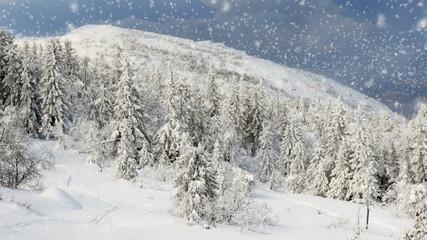 Winter in Norway Snowing in Telemark