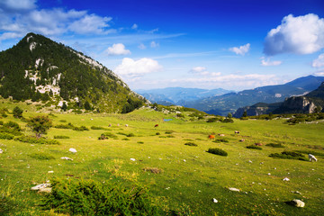 Summer view of mountain meadow