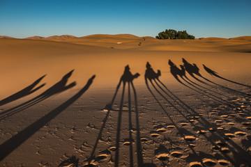 Ombre su deserto di sabbia