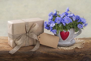 Gift box and campanula flowers
