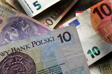 Polski złoty Polish 폴란드 즈워티 Польский злотый Zloty Poland