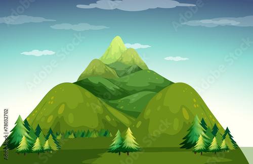 Mountain - 78032702